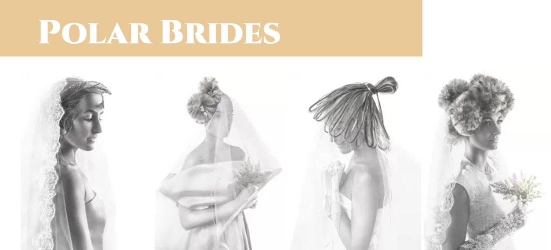 Cabecera Colección Polar Brides