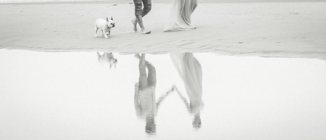 Preboda en la playa. B+R+B. Bulldog francés.